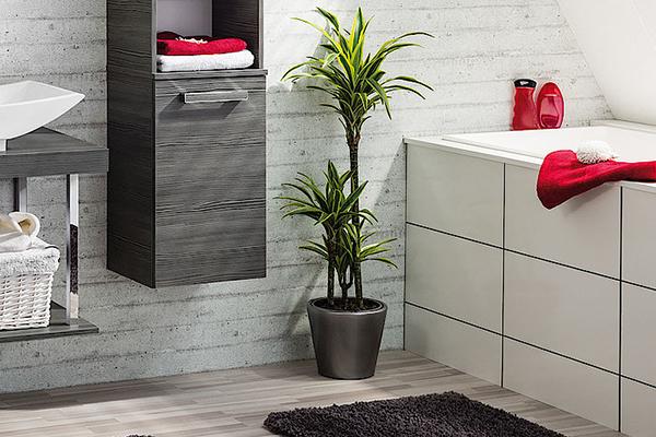 Handtücher und Waschlappen sollten regelmäßig gründlich gewaschen werden.